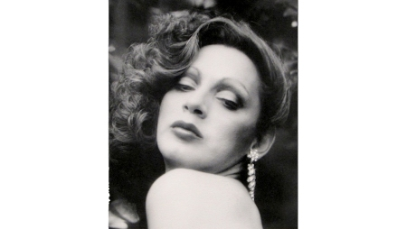 holly woodlawn landscape
